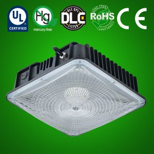 LED Canopy Light style D