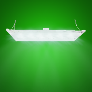 LED 2'x4' High Bay