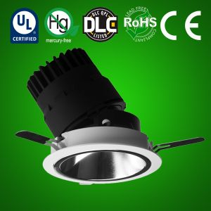 LED Adjustable Circular Downlight
