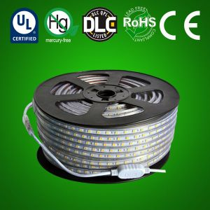 LED High Voltage Strip Light- RGB