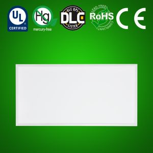 LED Panel Light 2'x4'