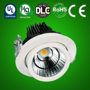 LED Pullout Downlight