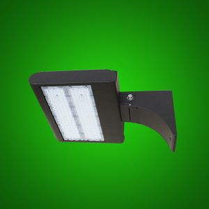 Versatile LED Flood Light