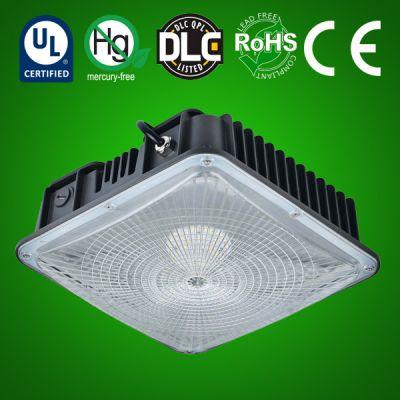 LED Canopy Light style D