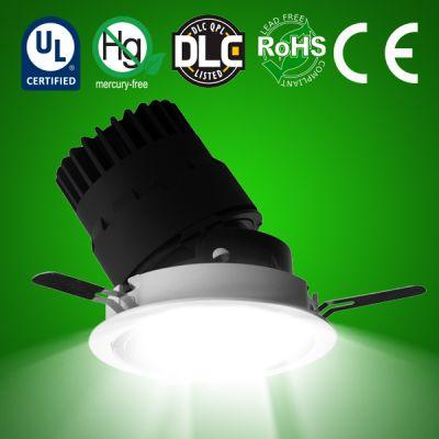 LED Adjustable Circular Downlight