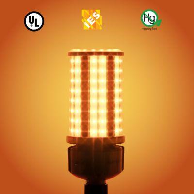 LED Turtle Light