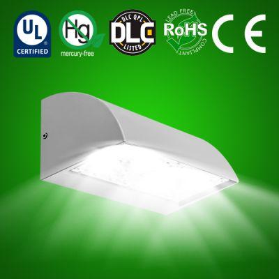 LED Wallpack GUARD